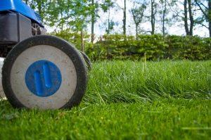 lawn robot mower