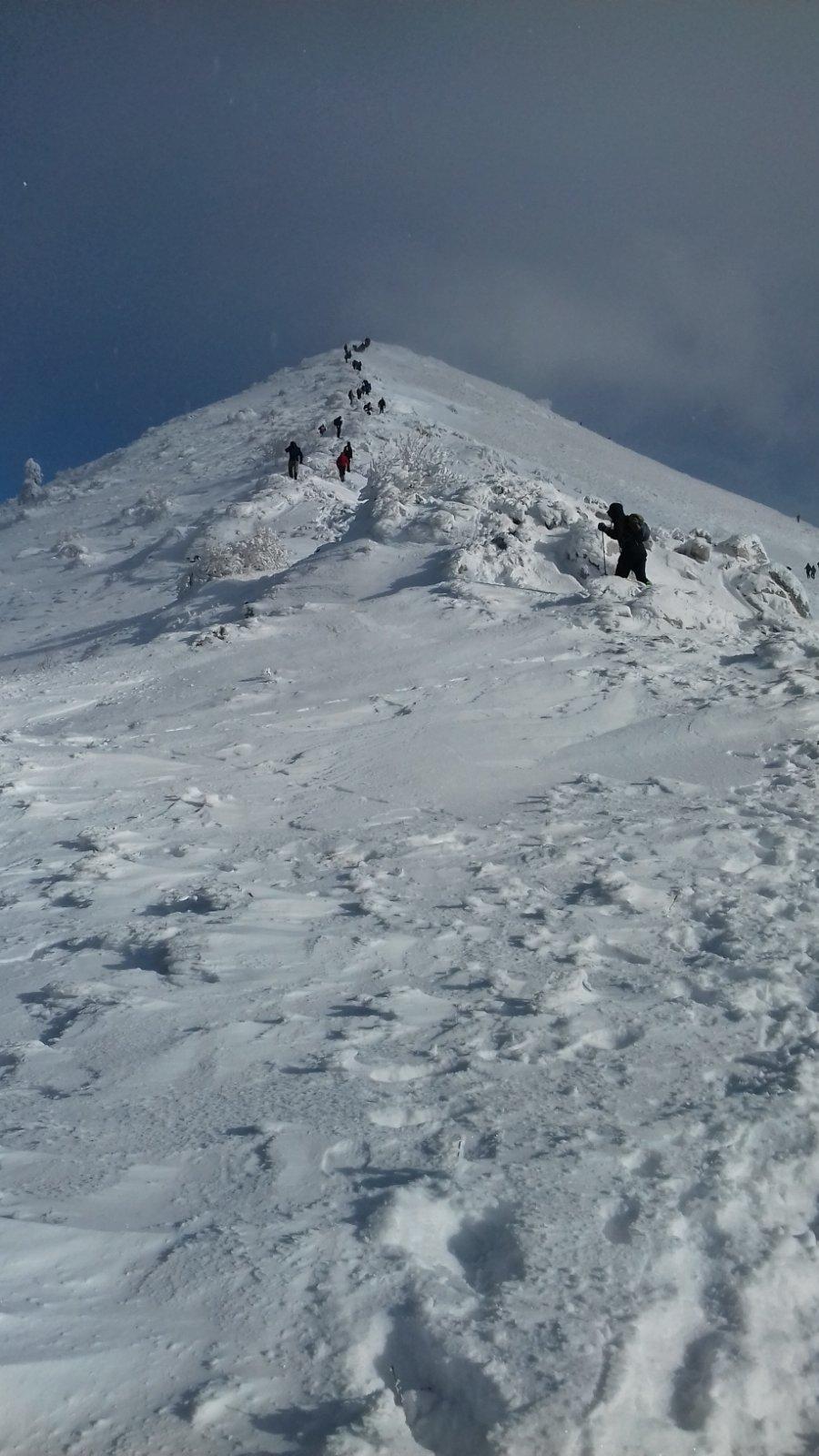 Hiking Adventures winter