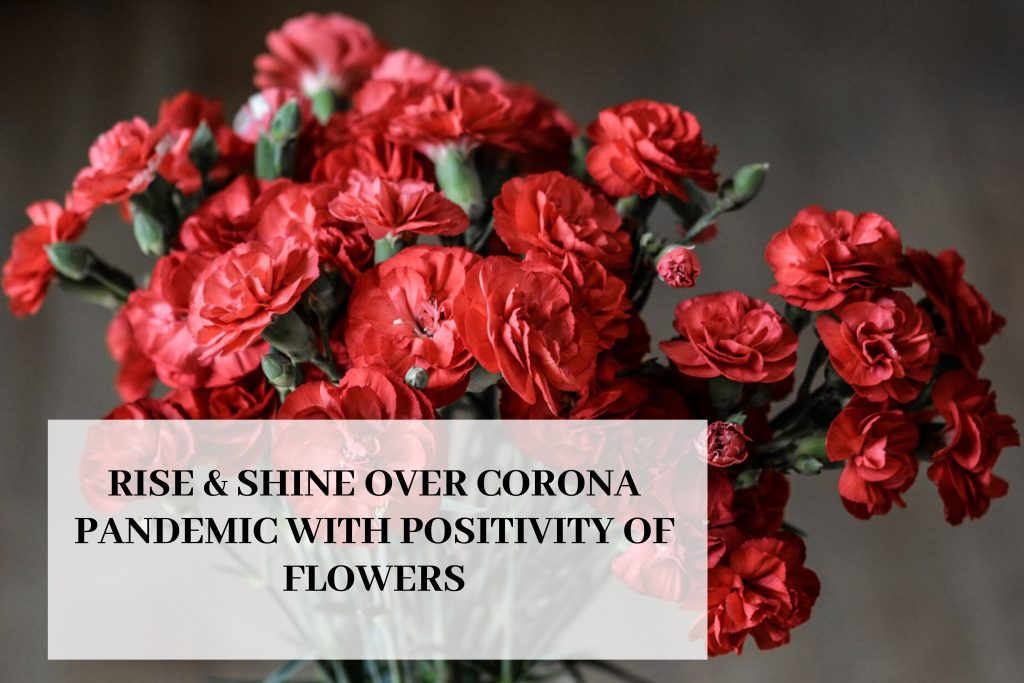 Rise & Shine Over Corona Pandemic With Positivity Of Flowers