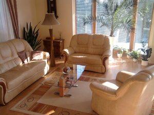 flower in modern Living Room