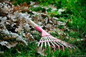 lawn-rake