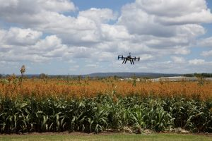 dron in agriculture