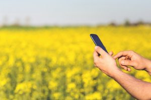 smartphone agriculture
