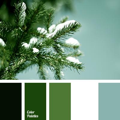 Bold Palette