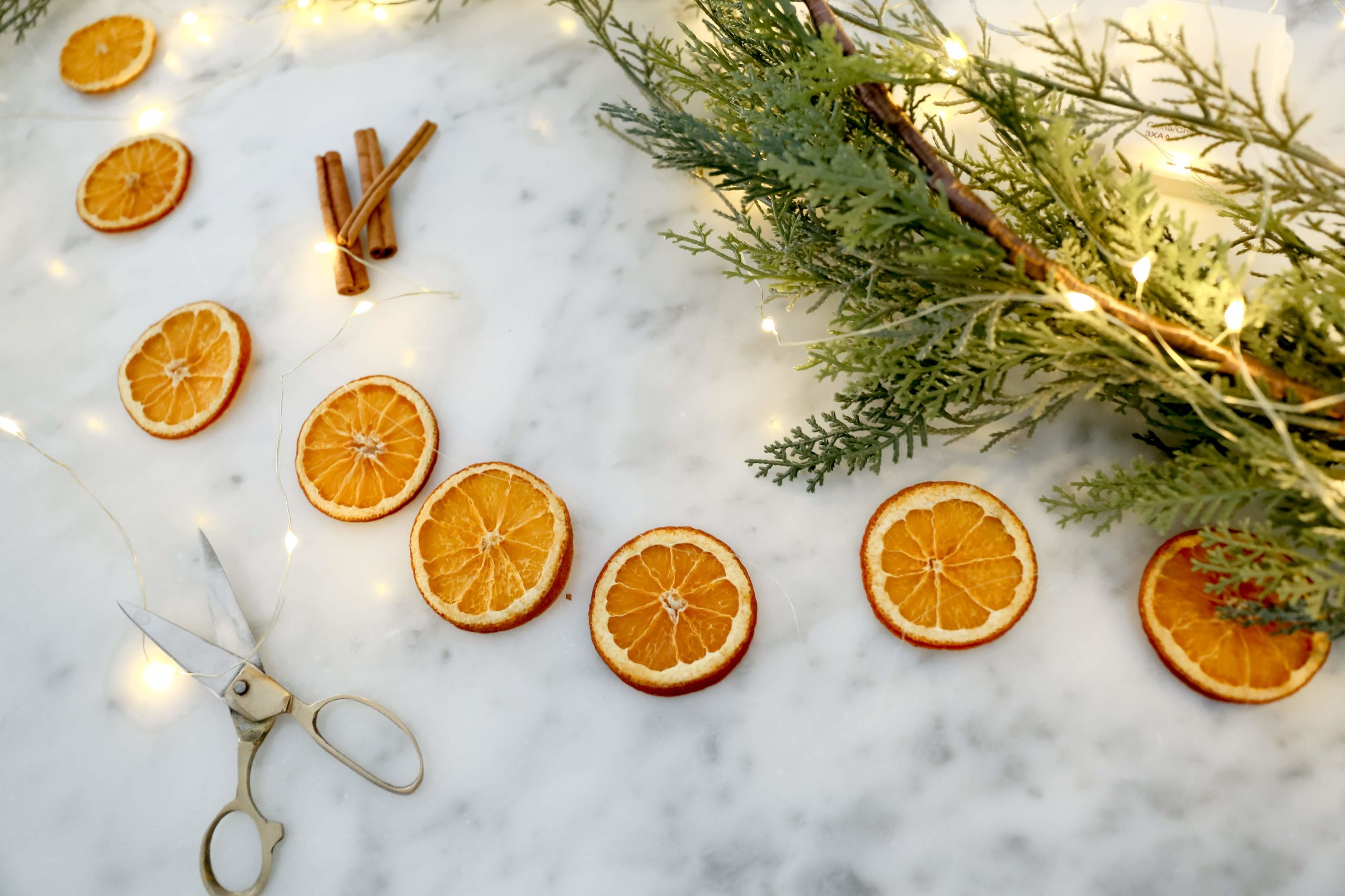 Dried Citrus Christmas Garland