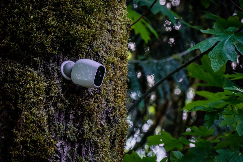 garden gadgets camera